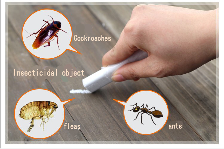 http://www.pczone.com.my/A1/Cockroach%20chalk%20killer/Cockroach%20Chalk%20Killer_2.jpg